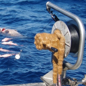 Hydraulic Deep Sea Fishing Reel
